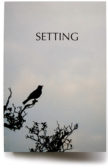 SETTING cover